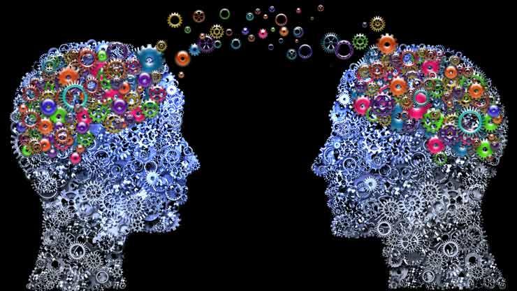 Can Neuroscience Inform Our Understanding of SEND?